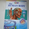 The Human Body (Fascinating Facts)