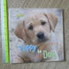 Puppy to Dog (Paperback)