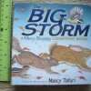 The Big Storm (A Very Soggy Counting Book)