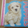 PUPPIES (Board Book)
