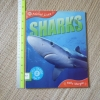 SHARKS (Animal Lives)/ Key Stage 2/ Age 7+