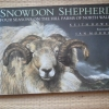 Snowdon Shepherd: Four Seasons on the Hill Farms of North Wales