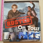 BUSTED On Tour: The Official Book