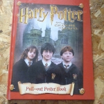 Harry Potter and the Chamber of Secrets (Pull-out Poster Book)