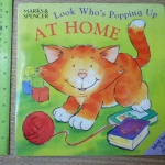 Look Who's Popping Up: AT HOME (Pop-Up Book)