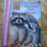 Animal Ark 30: Racoons on the Roof