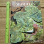 SEASHELLS: A Portrait of the Animal World