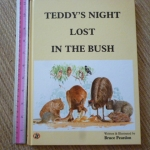 Teddy's Night Lost in the Bush