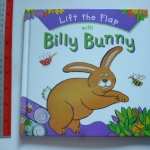 Lift The Flap With BILLY BUNNY (Flap Book)