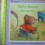Baby Bear's Surprise (Board Book)