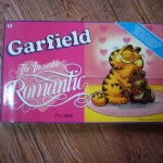 Garfield The Incurable Romantic