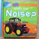 What's That NOISE? (Pop-Up Book)