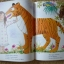 Mog the Forgetful Cat (Paperback) thumbnail 8