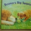 Boomer's Big Surprise (Paperback) thumbnail 1