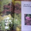 The Ultimate GARDENING Book thumbnail 18