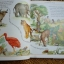 A First Bible Story Book thumbnail 8