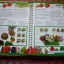First Garden Activity Book (With FREE Seed Collecting Envelopes and Stickers) thumbnail 5