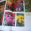 The Ultimate GARDENING Book thumbnail 11