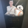 Hot Toys MMS337 REY AND BB-8 Star Wars: The Force Awakens 1/6 Scale NEW