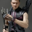 Hot Toys MMS172 - The Avengers Hawkeye Limited Edition Collectible NEW thumbnail 6