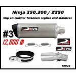 ท่อ Kawasaki Ninja250-300/Z250-300 Devil Silp on muffler Titanium replica and stainless #3