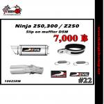 ท่อ Ninja250-300/Z250-300 Devil Slip on muffler D5M