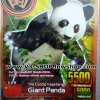 ANIMAL KAISER Giant Panda BRONZE RARE CARD