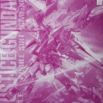 Special ITems:MG 1/100 Justice Gundam (Clear Color