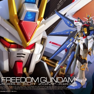 RG14 1/144 Strike Freedom 3000y