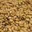 Unmalted Wheat thumbnail 1